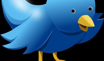 Апетитна хапка ли е Twitter и за кого?