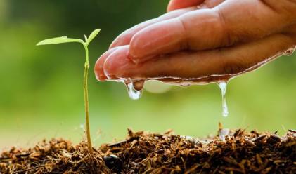 Лондон плаща субсидии за селско стопанство и научни изследвания