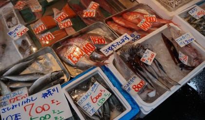 На най-големия рибен пазар в света рибата може да струва милиони