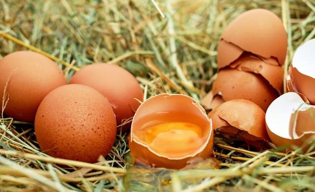 Заразени яйца с фипронил са открити в 15 страни членки на ЕС