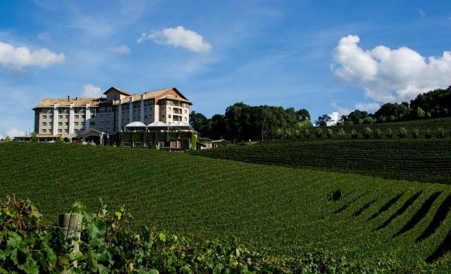 Ако обичате виното, пенсионирайте се в един от тези градове