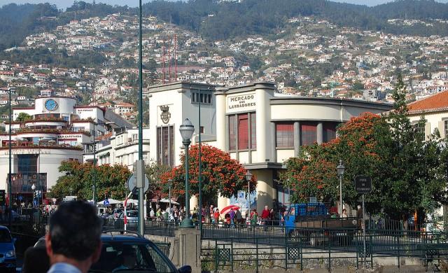 8 причини да посетите остров Мадейра