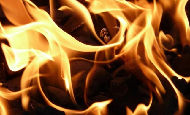 8000 декара горят в Хасковско