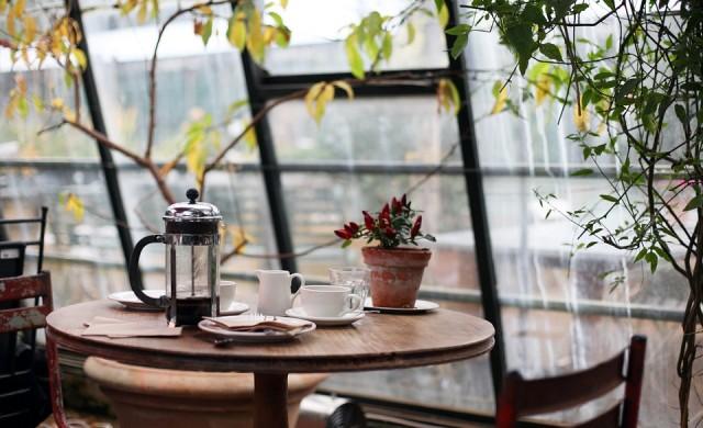 Какво се случва с мозъка ни след само една чаша кафе?