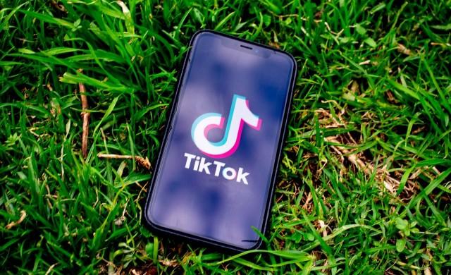 Най-добре печелещите звезди в TikTok