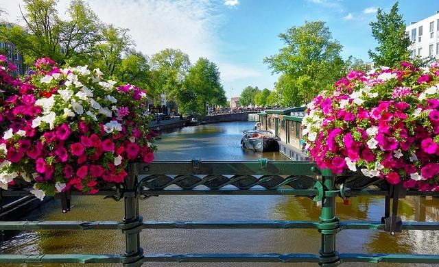 Мостът от неръждаема стомана, който променя Амстердам