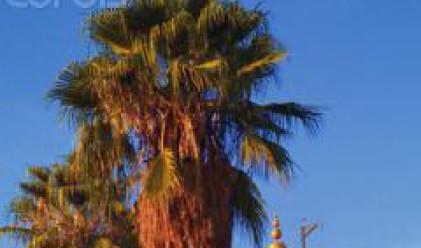 Мароко в очакване на повече от 10 млн. туристи през 2010 г.