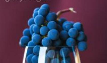 Винарските предприятия са изкупили повече от 17 хил. т грозде към 13 септември