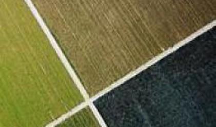 Земите на Елана Фонд за Земеделска земя гонят 214 хил. дка.