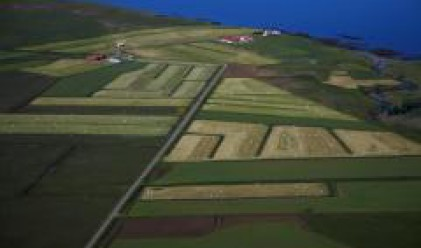 Членовете на БАСЗЗ притежават 1.2 млн. дка земеделски земи