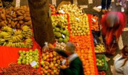 Оранжерийните зеленчуци поскъпват заради газта