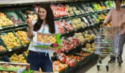 Румъния - все по-привлекателна за търговците на дребно в Европа