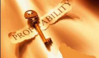 Рентабилността за румънските строители падна до 30-40%