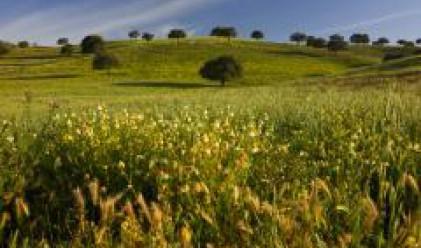 Цената на земеделската земя у нас седем пъти по-ниска от тази в Гърция