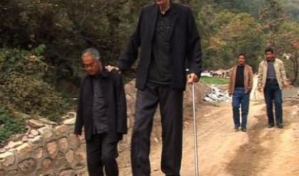 Най-високият мъж в света спрял да расте преди година