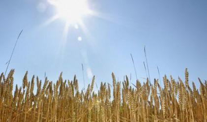 Bloomberg: България удвои износа на зърно