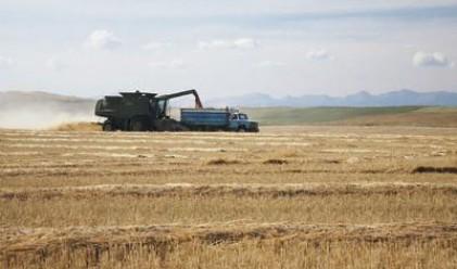 Опасенията около глобалните доставки на храни растат