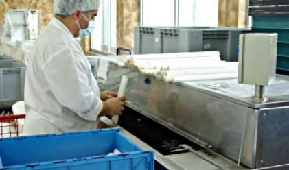 Еврохолд България продава компании за 40 млн. лв.