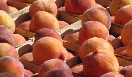 Праскови, дини и домати с ръст през седмицата