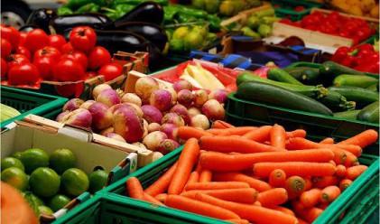 Зеле, моркови и грозде поевтиняха през седмицата