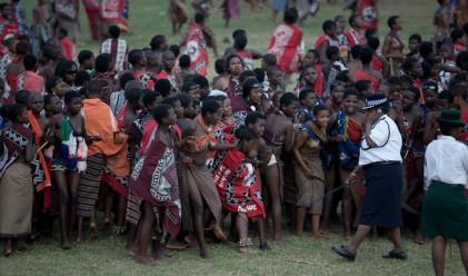 Хиляди гологърди девици участваха в Танца на тръстиките в Свазиленд