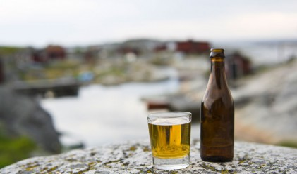 Защо алкохолът в скандинавските страни е толкова скъп