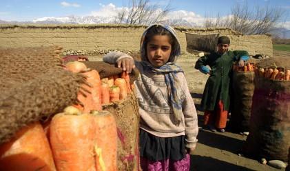 Мръсните пари на Афганистан, или как работи системата хавала