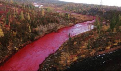 Руска никелова компания призна, че е виновна за червената река