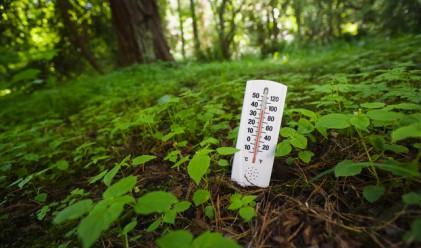 Август 2016 г. - най-топлият в историята