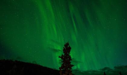 Десетте най-добри начина за наблюдаване на Северното сияние
