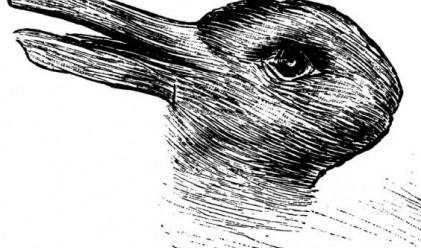 Заек или патица? Зависи от гледната точка