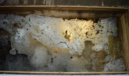 Природни феномени: пещерата, която образува лед само през лятото