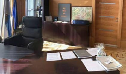 Кмет скри две котки в офиса си. Ще ги откриете ли?