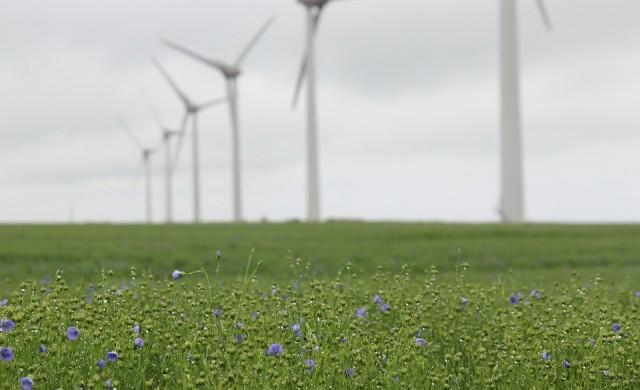 Знаете ли колко вятърни турбини има по света?