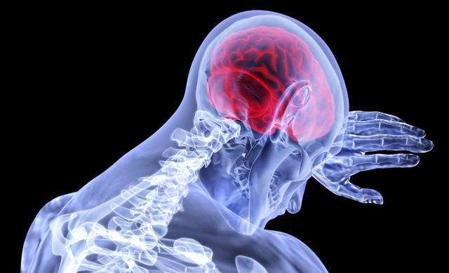 Топ 9 храни за мозъка