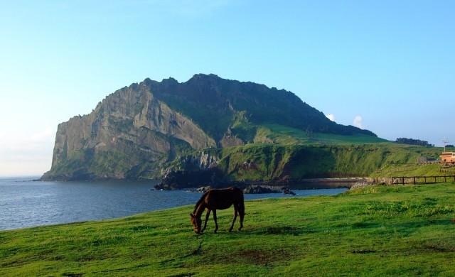 Най-натовареният въздушен маршрут в света е до остров Чеджу-до