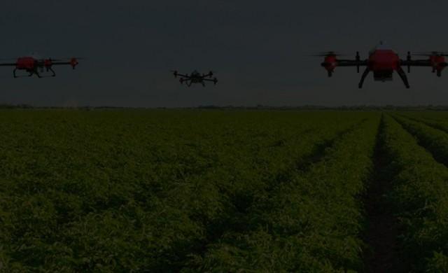 В Китай избиват напаст по селскостопанските култури с дронове
