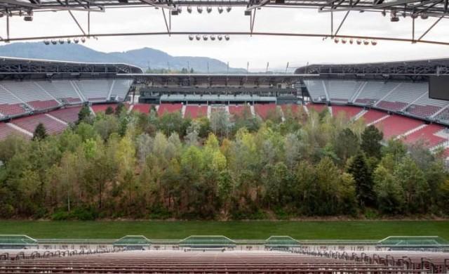 Защо на този стадион има гора?