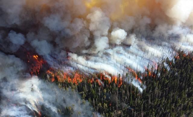 Застрахователите започват да виждат риска от климатичните промени