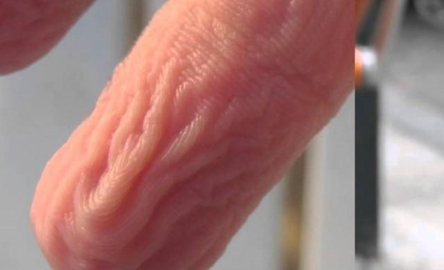 Причината пръстите ви да се набръчкват във вода