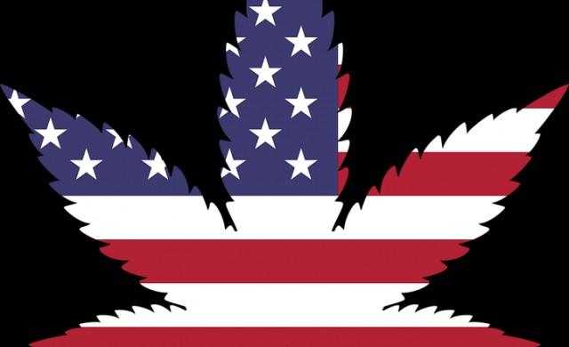 Превръща ли се САЩ в меката на легалната марихуана?