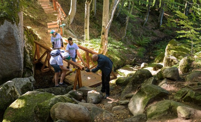 Доброволци от Пощенска банка обновиха екопътека на Витоша