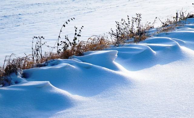 Първи сняг у нас, животновъдите в Бистрица в паника