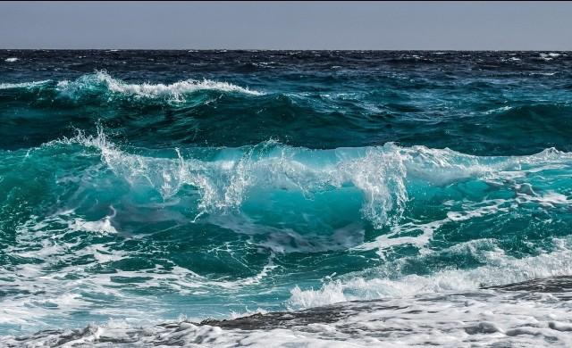 Водолази от цял свят търсят огромно съкровище в Черно море