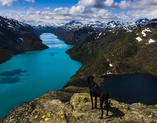 Норвегия създава десет нови национални парка