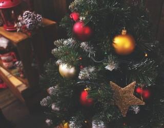 Коледните елхи поскъпват сериозно в САЩ за празниците