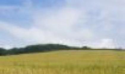 Селскостопанската продукция в Румъния по-ниска със 70% тази година