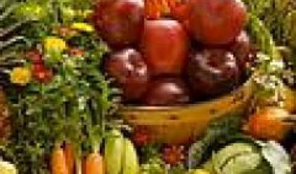 Консорциум купува борсата за зеленчуци в