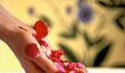 Спад от 55% за деветмесечието бележи печалбата на Българска роза - Севтополис