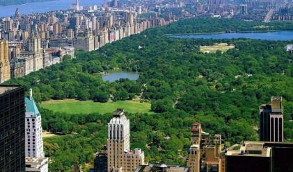 Седем големи градове, заплашени от потъване